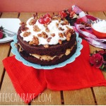 Christmas Spiced Chocolate Cake