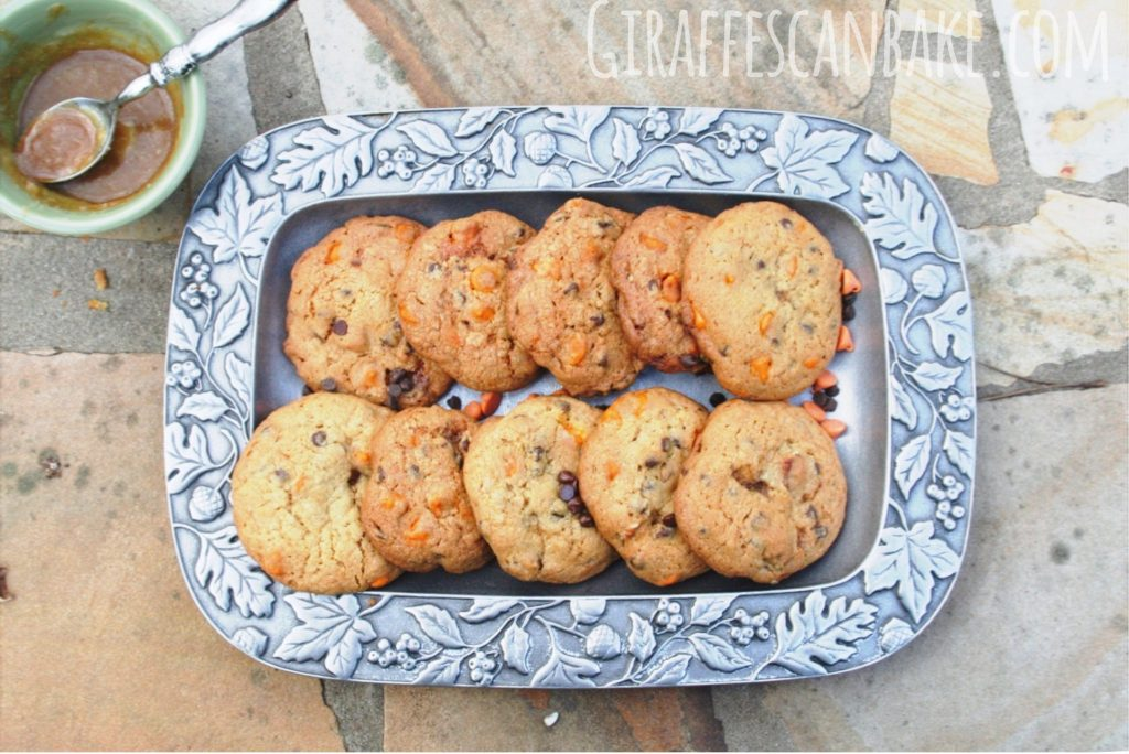 Christmas Spiced Pudding Cookies