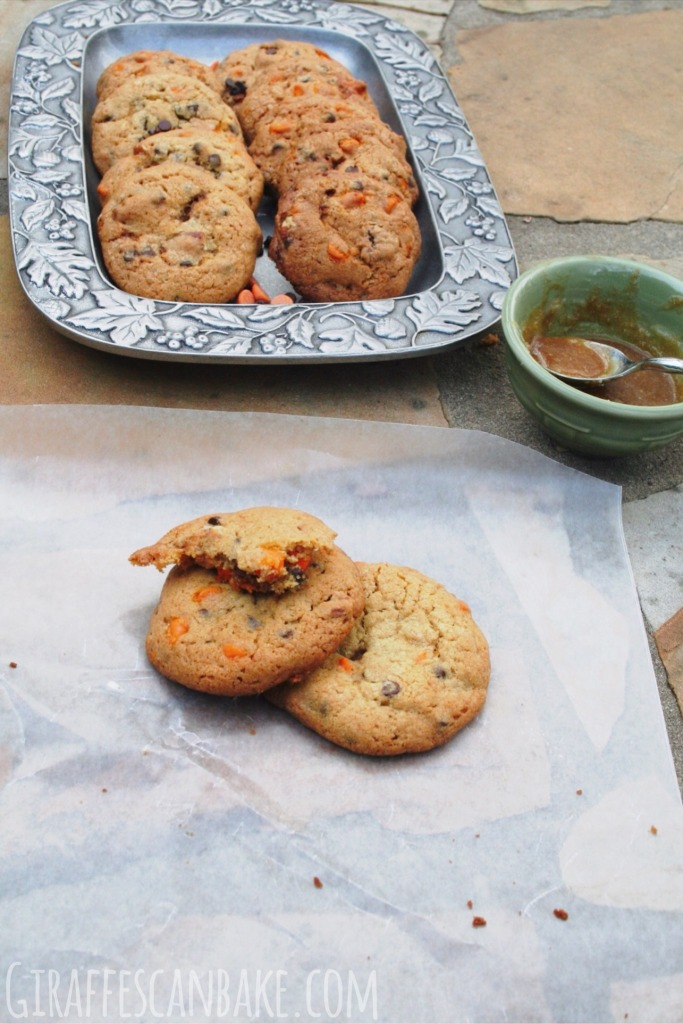 Christmas Spiced Pudding Cookies Giraffes Can Bake
