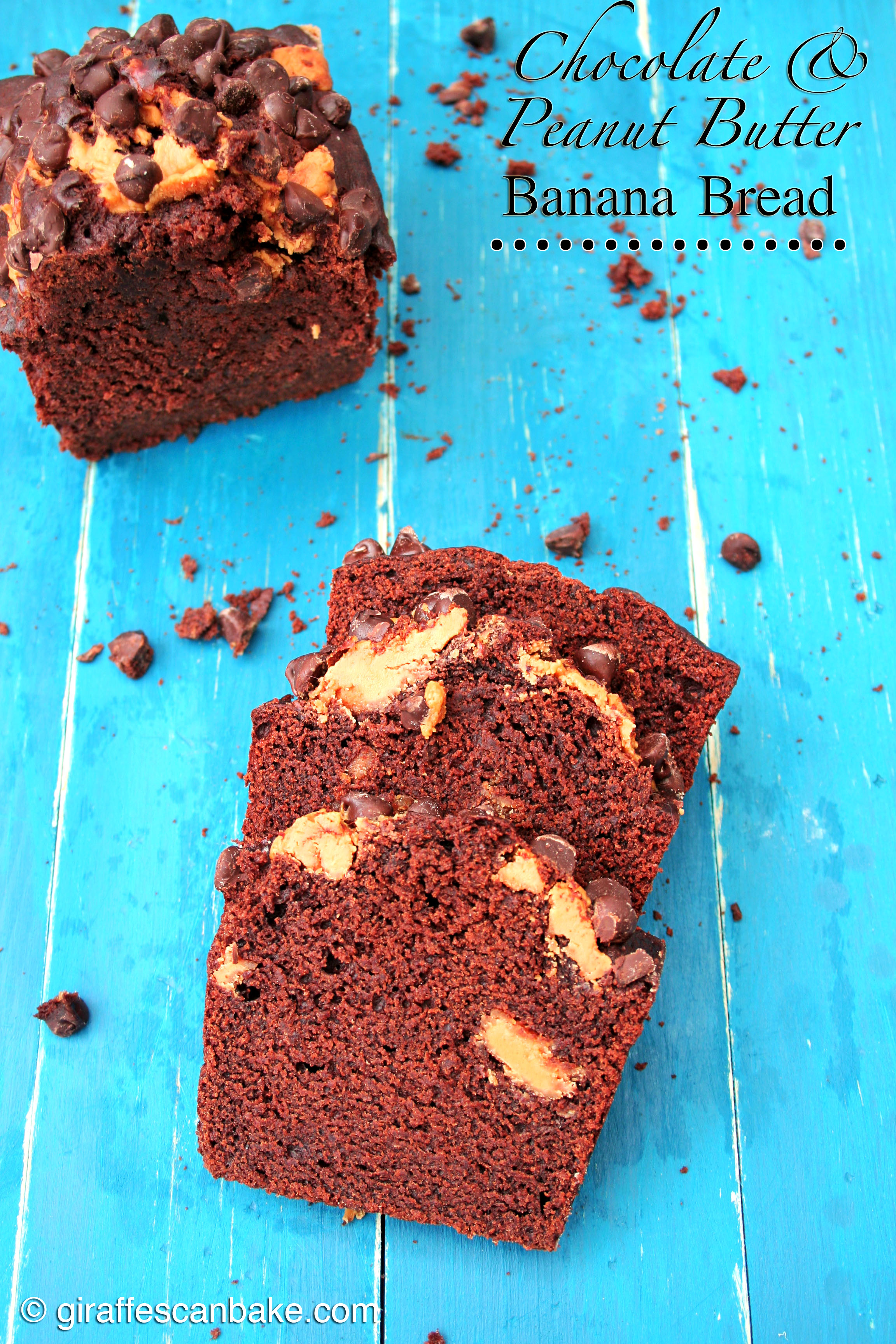 Frozen Banana-Chocolate And Peanut Butter Loaf Recipe — Dishmaps