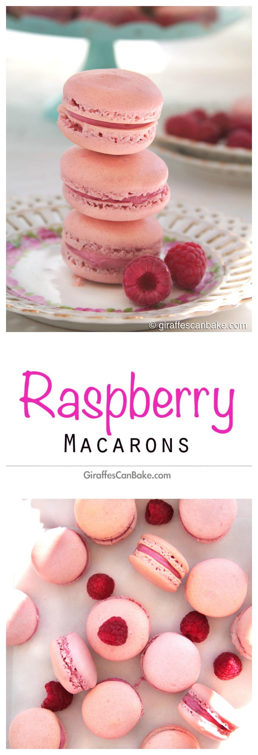 Raspberry Macarons by Giraffes Can Bake
