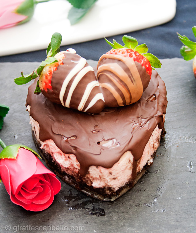 Chocolate Covered Strawberry Cheesecake for Two |Giraffes ...