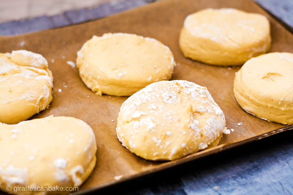 Gluten Free Yeast-Raised Margarita Donuts - fluffy, delicious and so easy! This amazing recipe also includes all my tips on how to make perfect gluten free yeast-raised donuts every time. Plus a FREE cheat sheet printable! - donut dough after raising