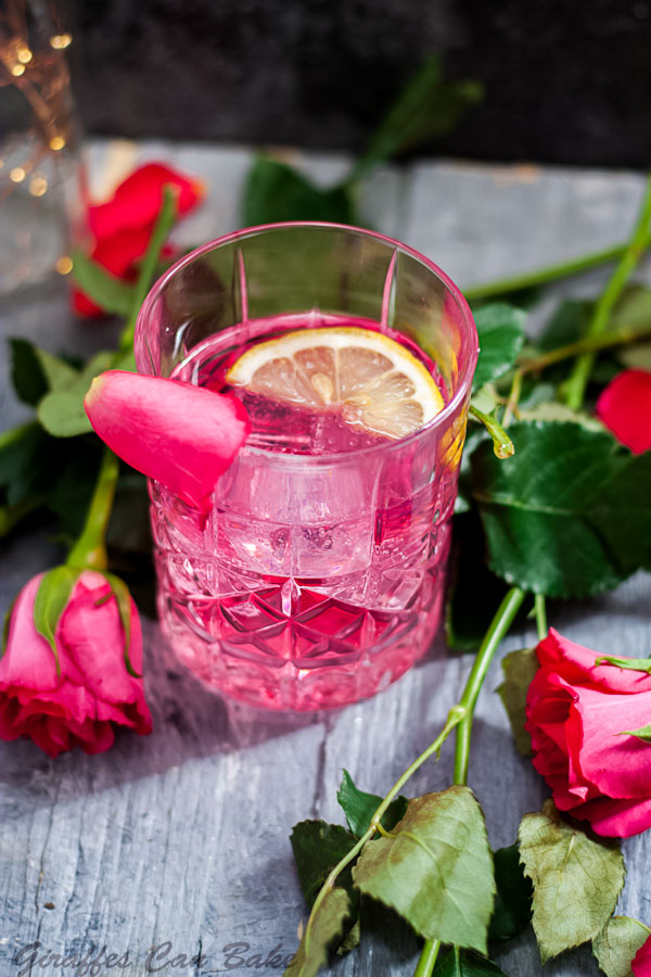 Rose Vodka Tonic Mixed Drink Cocktail - top view of pink cocktail in rocks glass, roses surround glass